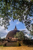 Polonnaruwa Ancient City, photo of Rankot Vihara Dagoba, UNESCO World Heritage Site, Sri Lanka, Asia. This is a photo of Rankot Vihara Dagoba at Polonnaruwa Ancient City, UNESCO World Heritage Site, Sri Lanka, Asia.