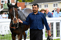 Cotton Club and stable lad in the winners enclosure during Afternoon Racing at Salisbury Racecourse on 13th June 2017