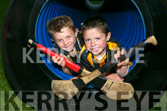 At the Tom Healy Memorial Park Family Fun Day Abbeydorney on Sunday were Terry Healy and Donagh O'Connell