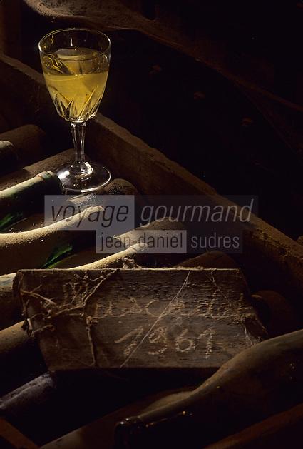 Europe/France/Pays de la Loire/44/Loire-Atlantique/Saint-Fiacre : AOC Muscadet Sèvre et Maine - Chereau carré château de Chasseloir la Haie Fouassière