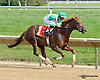 Hand To Handle winning at Delaware Park on 9/18/14