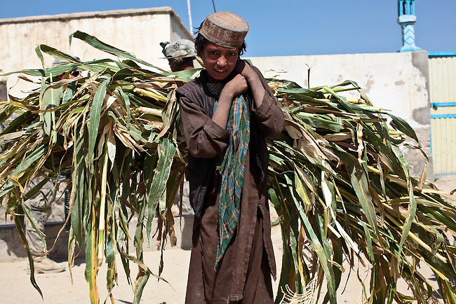 A boy carries a load of corn stalks on his back as U.S. soldiers pass by while on patrol in Malajat, near Kandahar, Afghanistan. Oct. 7, 2010. DREW BROWN/STARS AND STRIPES