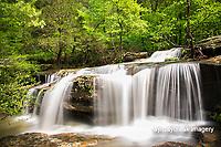 63895-15115 Burden Falls Shawnee National Forest Saline Co. IL