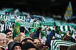 Stockholm 2015-10-25 Fotboll Allsvenskan Hammarby IF - Malm&ouml; FF :  <br /> Hammarbys supportrar med halsdukar under matchen mellan Hammarby IF och Malm&ouml; FF <br /> (Foto: Kenta J&ouml;nsson) Nyckelord:  Fotboll Allsvenskan Tele2 Arena Hammarby HIF Bajen Malm&ouml; FF MFF