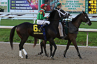 January 17, 2015: Savoy Stomp (KY) with Mike E Smith in the Lecomte Stakes at the New Orleans Fairgrounds course. Steve Dalmado/ESW/CSM