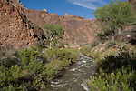 Phantom Ranch and Bright Angel Creek, along the Colorado River in Grand Canyon National Park, Arizona .  John offers private photo tours in Grand Canyon National Park and throughout Arizona, Utah and Colorado. Year-round. . John offers private photo tours in Grand Canyon National Park and throughout Arizona, Utah and Colorado. Year-round.