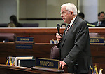 Nevada Assemblyman Lynn Stewart, R-Henderson, speaks on the Assembly floor at the Legislative Building in Carson City, Nev., on Monday, March 16, 2015. <br /> Photo by Cathleen Allison