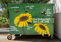 Bioscience Building. One of many dumpsters painted by students as part of the Dumpster Art Project, sponsored by the Office of Sustainability. Photographed June 8, 2018.<br /> (Photo by Marc Campos, Occidental College Photographer)