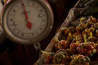 Carm&eacute;zia, &iacute;ndia Macuxi, prepara a damorida, comida ind&iacute;gena a base de peixes ou ca&ccedil;a temperada com forte molho apimentado.<br /> Comunidade ind&iacute;gena  Macux&iacute;, Raposa Serra do Sol.<br /> Normandia, Roraima, Brasil.<br /> Foto Paulo Santos<br /> <br /> 2004