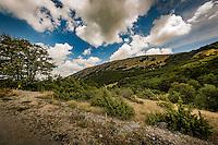 Makedonien.Køretur over bjergene fra Ohridsøen gennem Nacionalen Park Galicica til Prespasøen. Foto: Jens Panduro