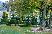 France, Maine-et-Loire (49), Champtocé-sur-Loire, Château du Pin, les jardins