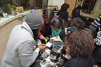 New York, NY, USA - November 15, 2017: Mollie Thurman, Chief Scientist, and Seneca Lee, Support Scientist, from BioBus with students from the Girl's Prep school at the Lower East Side Ecology Center on the East River. The program introduces students to the marine life found in the East River and how to use microscopes to identify the various organisms.