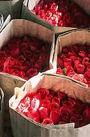 Thaïlande/Bangkok: Marché Parklong Talad - Détail de l'étal d'un marchand de fleurs