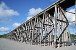 Trestle Bridge on old logging road north of Fort Bragg