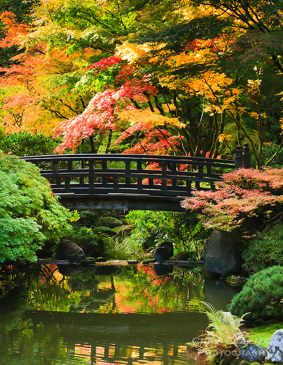 gift card photo set of 4 of moon bridge in strolling pond garden - Red Japanese Garden Bridge