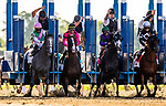 JUNE 08: War of Will and Tyler Gaffalione stumble at the start of The Belmont Stakes at Belmont Park in Elmont, New York on June 08, 2019. Evers/Eclipse Sportswire/CSM