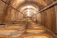 Underground corridor with barrels. Oak barrel aging and fermentation cellar. Torres Penedes Catalonia Spain