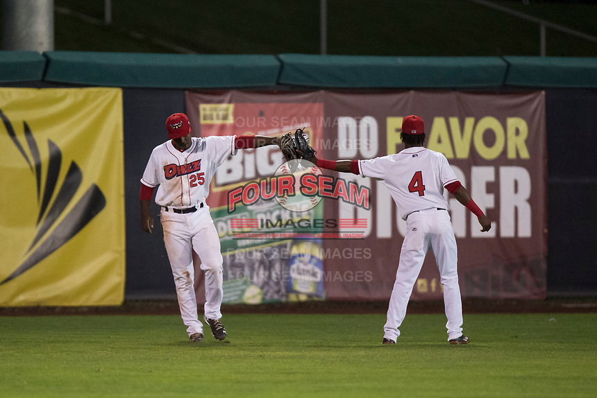 Orem Owlz left fielder Johan Sala (25) is congratulated by D'Shawn Knowles (4) after making a catch during a Pioneer League game against the Ogden Raptors at Home of the OWLZ on August 24, 2018 in Orem, Utah. The Ogden Raptors defeated the Orem Owlz by a score of 13-5. (Zachary Lucy/Four Seam Images)
