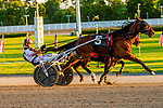 """JUNE 27, 2019 : Century Ferrari, driven by Marcus Miller, wins Division #2 of the $45,000 Excelsior """"A"""" Series for 3 year olds, at Yonkers Raceway, on June 27, 2019 in Yonkers, NY.  Sue Kawczynski_ESW_CSM"""