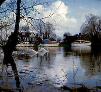 Two swans on the river Thames in the winter,showing boats moored at the waters edge.London, circa 1974