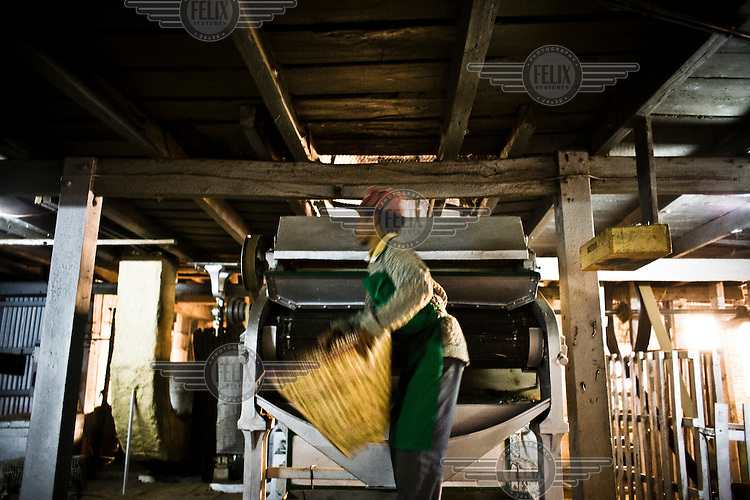 Factory worker, Indrey Sarki throws tea leaves into the drier during the process of tea drying at Makaibari Tea Estate factory in Kurseong, Darjeeling.