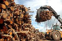 """InÌcio do processo industrial na f·brica da JarÌ de papel e celulose  (grupo Orsa).<br /> A f·brica construÌda em cima de uma balsa foi trazida por empurradores do Jap""""o no final da dÈcada de 70 e instalada as margens do rio JarÌ, fronteira do Par· com o Amap·.<br /> Pelo porto construÌdo ao lado da f·brica administrado pela Amazonlog È feito o escoamento da produÁ""""o de papel e celulose. <br /> Almeirim, Par·, Brasil.<br /> Foto Paulo Santos/Interfoto<br /> 03/2005.F·brica da JarÌ de papel e celulose  (grupo Orsa).<br /> A f·brica construÌda em cima de uma balsa foi trazida por empurradores do Jap""""o no final da dÈcada de 70 e instalada as margens do rio JarÌ, fronteira do Par· com o Amap·.<br /> Pelo porto construÌdo ao lado da f·brica administrado pela Amazonlog È feito o escoamento da produÁ""""o de papel e celulose. <br /> Almeirim, Par·, Brasil.<br /> Foto Paulo Santos/Interfoto<br /> 03/2005."""
