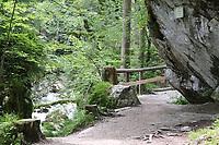 Wanderweg am Naturlehrpfad - Berchtesgaden 16.07.2019: Zauberwald und Hintersee in Ramsau