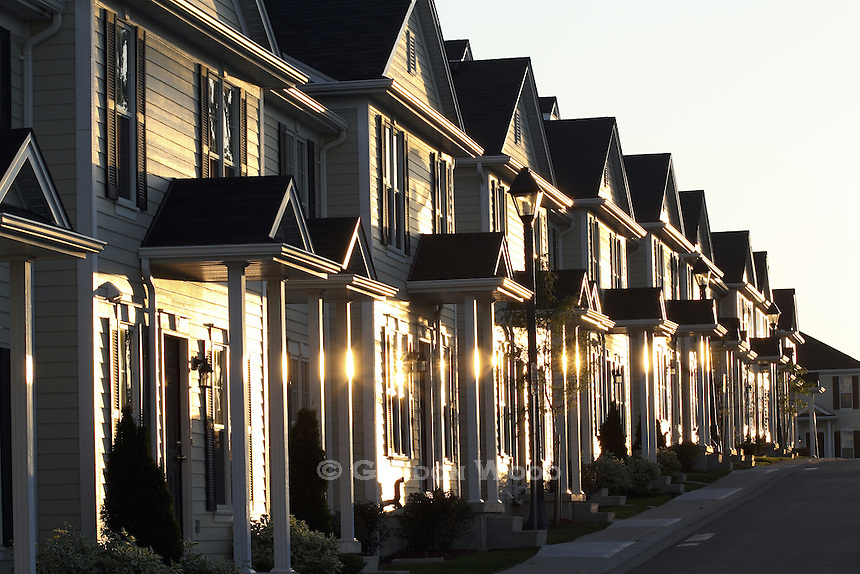 Townhouses in a Row Gleaming at Sunset