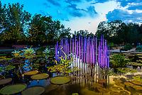 """Monet Pool Fiori"", Monet Pool, Dale Chihuly Exhibition (blown glass), Denver Botanic Gardens, Denver, Colorado USA."