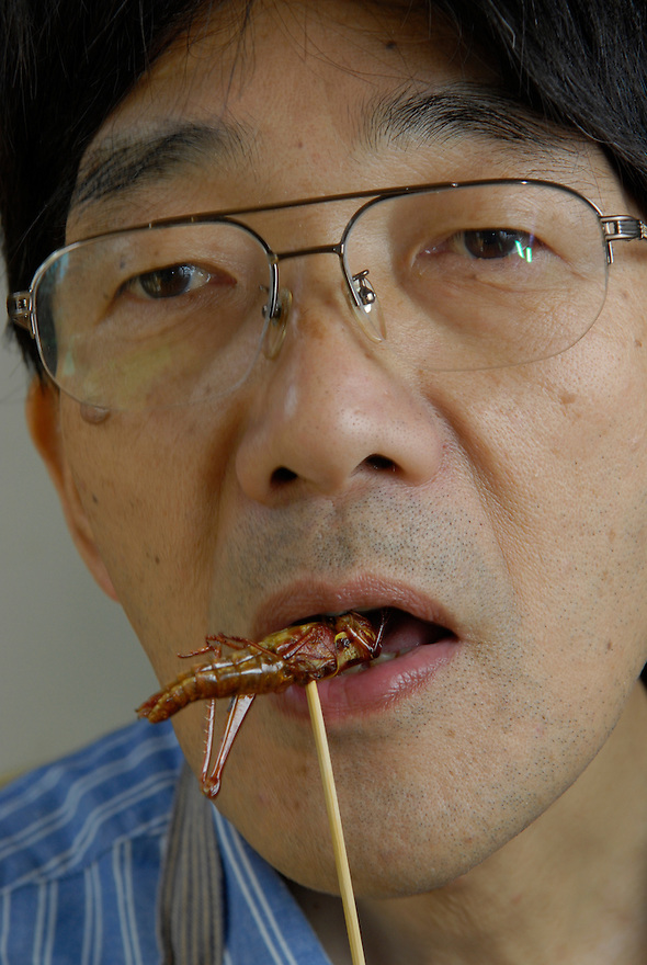 "Shoichi Uchiyama eating a locust.Tokyo resident Shoichi Uchiyama is the author of ""Fun Insect Cooking"". His blog on the topic gets 400 hits a day. He believes insects could one day be the solution to food shortages, and that rearing bugs at home could dispel food safety worries."