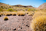Image Ref: CA524<br />