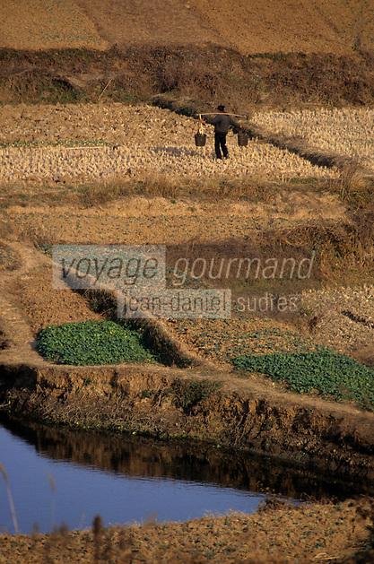 Asie/Chine/Jiangsu/Env Nankin&nbsp;: La campagne - Paysan  avec sa palanche sur le dos portant de l'eau pour arroser son champ <br /> PHOTO D'ARCHIVES // ARCHIVAL IMAGES<br /> CHINE 1990