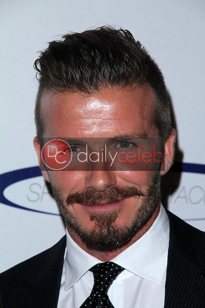 David Beckham<br />