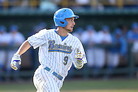 Shane Zeile #9 of the UCLA Bruins runs the bases against the Cal Poly Mustangs at Jackie Robinson Stadium on February 22, 2014 in Los Angeles, California. Cal Poly defeated UCLA, 8-0. (Larry Goren/Four Seam Images)