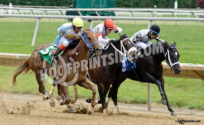 Galiana winning at Delaware Park racetrack on 6/5/14