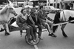Appleby in Westmorland. 1981  <br /> Travellers arrive in Appleby town, during the annual horses fair.