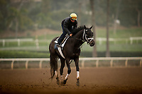 ARCADIA, CA - APRIL 01: Paved with Drayden Van Dyke at Santa Anita Park on April 01, 2018 in Arcadia, California. (Photo by Alex Evers/Eclipse Sportswire/Getty Images)