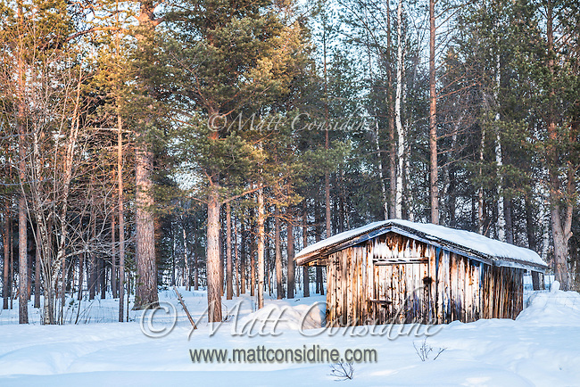 A few feet of pristine snow around old shed on edge of pine forest. (Photo by Travel Photographer Matt Considine)