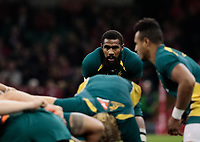 Australia's Marika Koroibete looks on during the pre match warm up<br /> <br /> Photographer Simon King/CameraSport<br /> <br /> International Rugby Union - 2017 Under Armour Series Autumn Internationals - Wales v Australia - Saturday 11th November 2017 - Principality Stadium - Cardiff<br /> <br /> World Copyright &copy; 2017 CameraSport. All rights reserved. 43 Linden Ave. Countesthorpe. Leicester. England. LE8 5PG - Tel: +44 (0) 116 277 4147 - admin@camerasport.com - www.camerasport.com