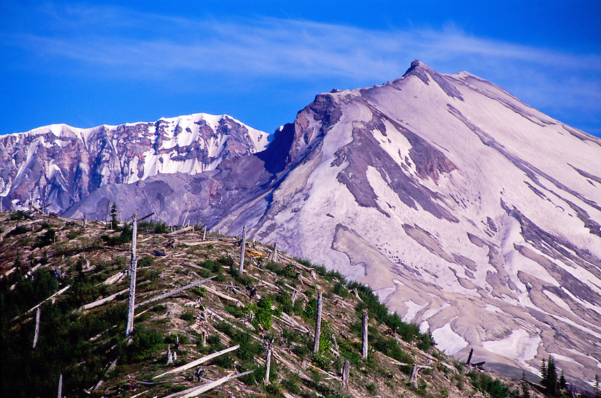 Mt. St. Helens amd Devastated Hillside, Mt. St. Helens National Volcanic Monument, Washington, US