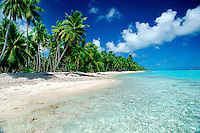 The tropical Pacific is known for its scenic landscapes of palm trees and white sand beaches, Rangiroa, French Polynesia