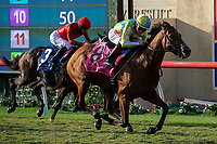 DEL MAR, CA  SEPTEMBER 2:  #8 Ride a Comet, ridden by Drayden Van Dyke, in the stretch of the Del Mar Derby (Grade ll) on September 2, 2018 at Del Mar Thoroughbred Club in Del Mar, CA.(Photo by Casey Phillips/Eclipse Sportswire/Getty ImagesGetty Images
