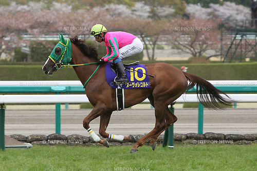 Nuovo Record (Yasunari Iwata),<br /> APRIL 13, 2014 - Horse Racing :<br /> Nuovo Record ridden by Yasunari Iwata before the Oka Sho (Japanese 1000 Guineas) at Hanshin Racecourse in Hyogo, Japan. (Photo by Eiichi Yamane/AFLO)
