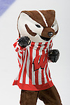 MADISON, WI - SEPTEMBER 29: Mascot Bucky Badger of the Wisconsin Badgers women's hockey team cheers during periods against the Quinnipiac Bobcats at the Kohl Center on September 29, 2006 in Madison, Wisconsin. The Badgers beat the Bobcats 3-0. (Photo by David Stluka)
