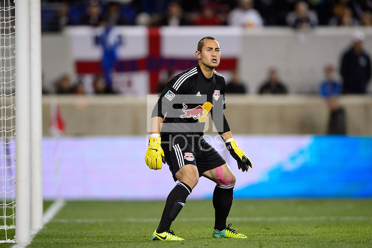 New York Red Bulls goalkeeper Luis Robles (31). The Houston Dynamo defeated the New York Red Bulls 2-1 (4-3 on aggregate) in overtime of the second leg of the Major League Soccer (MLS) Eastern Conference Semifinals at Red Bull Arena in Harrison, NJ, on November 6, 2013.