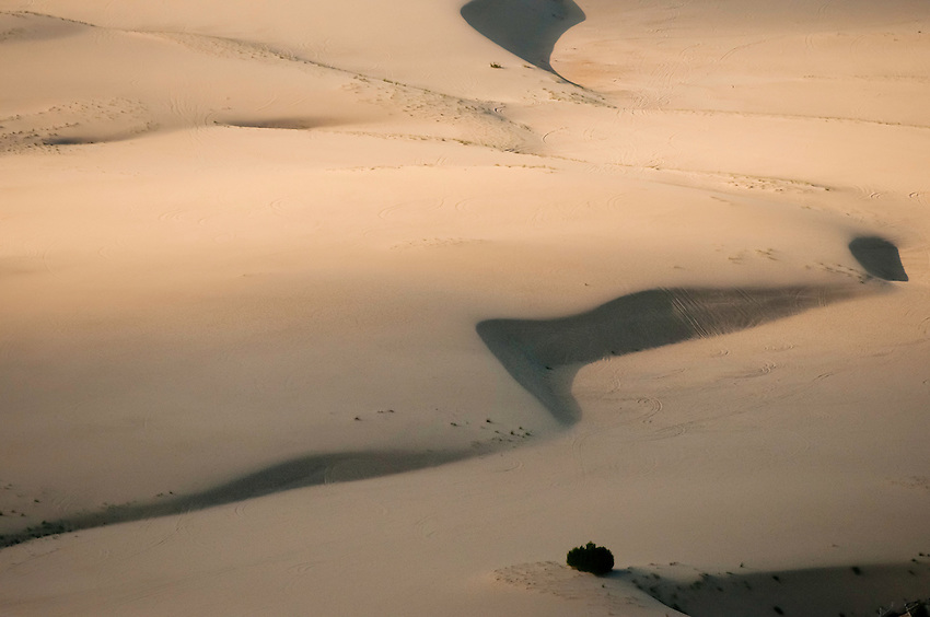 Sand dunes just south of the Peace Athabsca Delta. With Global warming, they have increased and consumed forest in the last decade.