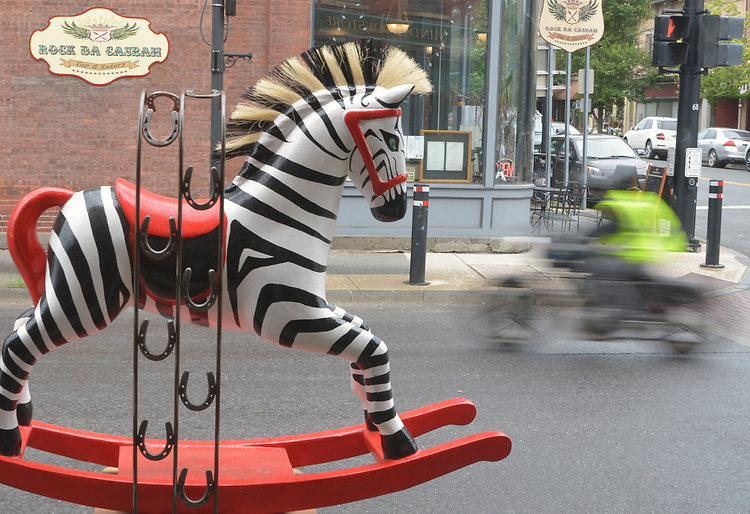 "A view of ""Deebra at the Zoo"" created by artist, Debra Ricks, one of the ""Rockin' Around Saugerties"" theme Statues on display throughout the Village of Saugerties, NY, on Sunday, June 4, 2017. Photo by Jim Peppler. Copyright/Jim Peppler-2017."
