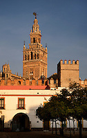 Low angle view of Giralda Minaret seen from the Patio de Banderas (Courtyard of the Flags), Seville Cathedral, Andalucia, Spain, pictured on December 26, 2006 in the winter morning light. Seville Cathedral is the largest Gothic building in the world. It was converted from the original 12th century Almohad Mosque on this site during the 16th century and the original Moorish entrance court and Giralda Minaret are both integrated in the cathedral. The Giralda is constructed of cut bricks, originally 82 metres high, now 103 metres high with the 16th century belfry added to the original tower. Picture by Manuel Cohen