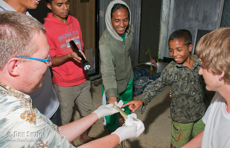 American herpetologist Hinrich Kaiser shows a dog-faced water snake, Cerberus rynchops, to Timorese children at a makeshift research station at Bakhita Mission, Near Eraulo, Ermera District, Timor-Leste (East Timor)