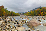 Autumn foliage along the East Branch of the Pemigewasset River, just below the Loon Mtn. Bridge, in Lincoln, New Hampshire on a cloudy autumn day. This is the location of where the No. 1 Dam (from the Lincoln Mill era) was. Little remains of it today.